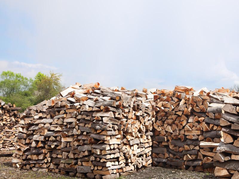 drewno bukowe olchowe